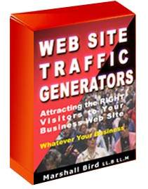 Web Site Traffic Generators E Book Attracting the Right Visitors to Your Business Web Site, Whatever Your Business