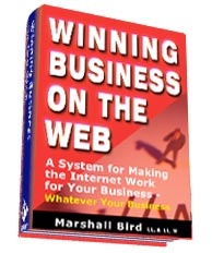 Winning Business On the Web E Book A System for Making the Internet Work for Your Business, Whatever Your Business